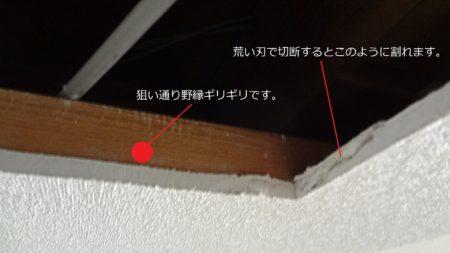 天井点検口